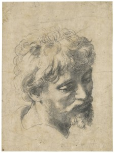 Raphael, Head of a Young Apostle, 1519-20. Black chalk, 38 x 28 cm.